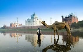 India1